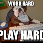 Working Like a Dog!