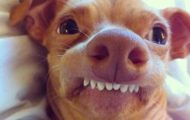 Smile, it's the weekend