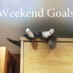 Weekend Goals – 905business.com