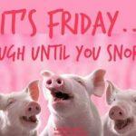 Friday Funny – 905business.com