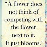 Monday Motivation – Be Your Flower
