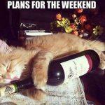 Weekend Plans – 905business.com
